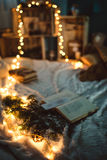 Christmas Decor lights. My home decor Royalty Free Stock Photography