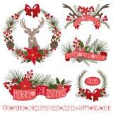 Christmas decor.Spruce branches,puansetiya,ribbins Royalty Free Stock Image