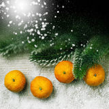 Christmas decor, tangerine and decorations Stock Image