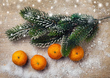 Christmas decor, tangerine and decorations. With snow Stock Photography