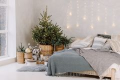 Free Christmas Decorated Bedroom Interior With Comfortable Bed, Christmas Fir Tree And Gift Boxes On Floor, Copy Space. Cozy Home Stock Images - 167329324