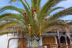 Christmas decorated palm tree Stock Images