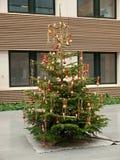christmas decorated tree στοκ φωτογραφίες με δικαίωμα ελεύθερης χρήσης