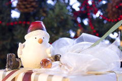 Christmas decorating with beautiful bird and present Stock Photo