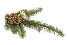Christmas decoration. Twig of the spruce decorated with cones and bell Stock Images