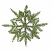 Christmas decoration. Star arranged from twigs of the spruce Stock Images