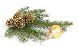 Christmas decoration. Twig of the spruce decorated with cones Royalty Free Stock Photos