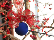 Christmas decoration. S, on the crab apples branch Stock Image