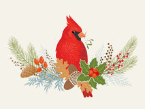 Christmas decoration. Floral decoration and Cardinal bird for your Christmas design Royalty Free Stock Photography