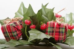 Christmas Decoration. Mistletoe and Presents Christmas Decoration Royalty Free Stock Images