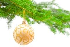 Christmas decoration. On coniferous tree on white Royalty Free Stock Photo