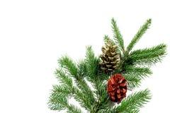 Christmas decoration. On white background Royalty Free Stock Photo