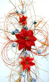 Christmas decoration. With flowers and cones Royalty Free Stock Images