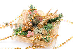 Christmas decoration. With green branches and sparkling globes Stock Image