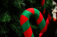 Beautiful of close up decoration in christmas tree branches background. stock images