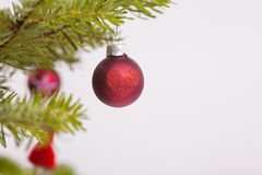 Christmas decoration aon a fir Stock Photo