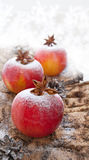 Christmas decoration with apple Stock Images