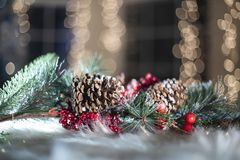 Christmas decoration background with cones and berries royalty free stock images