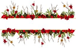 Christmas decoration background with golden stars and poinsetta Stock Photo