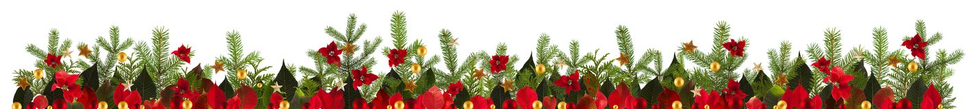 Christmas decoration background with golden stars and poinsetta Stock Photos