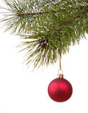 Christmas decoration ball on the firtree. Stock Image