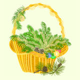 Christmas decoration basket with branches and baubles vector Stock Photography