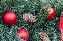 Christmas decoration baubles with branches of fir tree. Christmas decoration baubles with branches of fir tree Stock Images