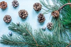 Christmas decoration. Branch christmas tree and cones spruce on snow. Top view, flat lay Stock Photo