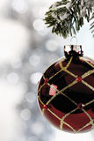 Christmas decoration, Christmas bauble hanging from pine twig Stock Images