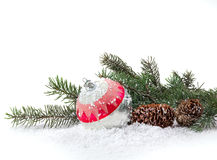 Christmas decoration of Christmas trees and cones Royalty Free Stock Image