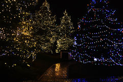 Christmas decoration city. At night Royalty Free Stock Photography