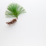 Christmas decoration composition of pine cone and branche on wh royalty free stock image