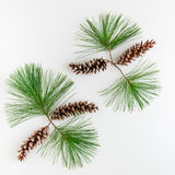 Christmas decoration composition of pine cones and branches on stock photo