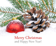 Christmas decoration and cone in snow Royalty Free Stock Image