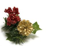 Christmas Decoration with a cones and holly Stock Image