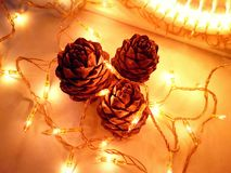 Christmas decoration with cones and light bulbs Stock Photos