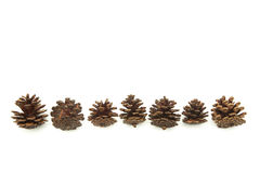 Christmas decoration cones in a row isolated on white Stock Photo
