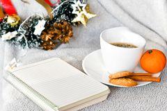 Winter weekend. Christmas decoration Delicious home made    cinnamon cookies mandarin, ,cup of coffee  on balcony in a snowy day Lazy winter weekend with a book Royalty Free Stock Photos