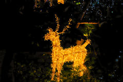 Christmas decoration. Displayed on bokeh lights background. Royalty Free Stock Images