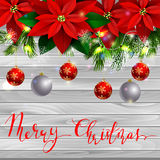 Christmas decoration evergreen trees Royalty Free Stock Images