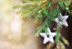 Christmas decoration on the fir branch Royalty Free Stock Photo