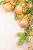 Christmas decoration on fir branch Stock Images