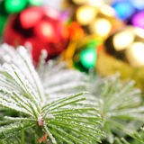 Christmas decoration on fir branch Stock Photography