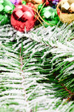 Christmas decoration on fir branch Royalty Free Stock Image