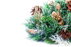 Christmas decoration with Fir branch Christmas and cones  on whi Royalty Free Stock Image