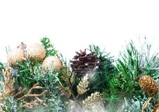 Christmas decoration with Fir branch Christmas and cones  on whi Stock Images