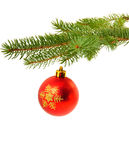 Christmas decoration on fir tree Royalty Free Stock Photo