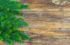 Christmas decoration of fir tree branches on wood background. Stock Image