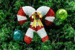 Christmas decoration on the fir tree. Outdoor Stock Image