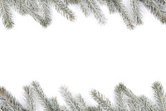 Christmas decoration fir tree snow winter frame isolated on whit Stock Image